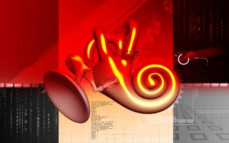 vestibule: Digital illustration of  Stapes in colour  background   Stock Photo