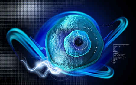 sexual reproduction: Digital illustration of  ovum cell in colour  background  Stock Photo