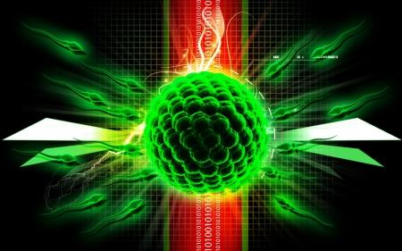 Digital illustration of sperm and egg in colour background   illustration