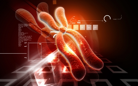 nucleic: Digital illustration  of chromosome in   colour background    Stock Photo