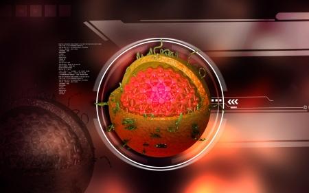 hepatitis a: Digital illustration of  Hepatitis in  colour  background Stock Photo