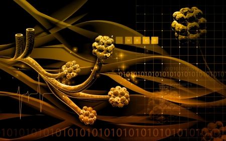 alveoli: Digital illustration of  alveoli  in  colour  background