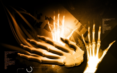 Digital illustration of hand bone in colour background  Stock Illustration - 18871344