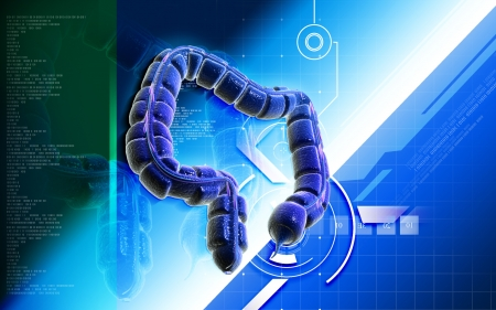 Digital illustration of large intestine in colour background Stock Illustration - 20353780