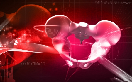 Digital illustration  of pelvic girdle in    colour background   Stock Illustration - 18998725