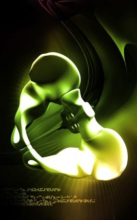 sacrum: Digital illustration  of pelvic girdle in    colour background    Stock Photo