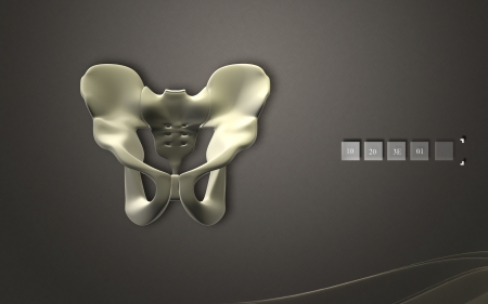 Digital illustration  of pelvic girdle in    colour background Stock Illustration - 19747842
