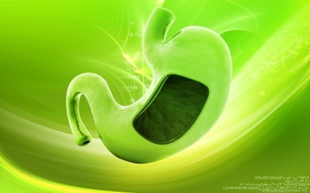 stomach acid: Digital illustration of  stomach  in colour  background   Stock Photo