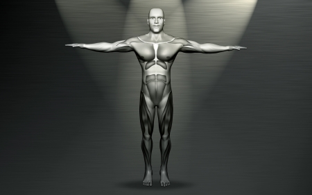 Digital illustration of human body with colour  illustration