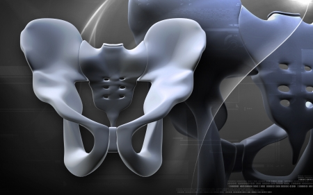 ileum: Digital illustration  of pelvic girdle in    colour background    Stock Photo