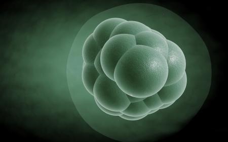 Digital illustration of stem cells in colour background  illustration