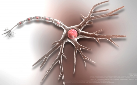 axon: Digital illustration of  neuron  in colour  background   Stock Photo