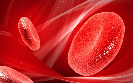blood cell: Digital illustration of  blood cell  in colour  background