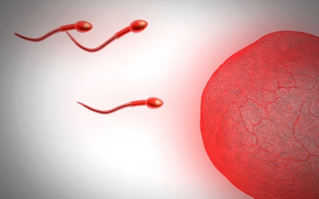 sexual health: Digital illustration of  sperm  in colour  background   Stock Photo
