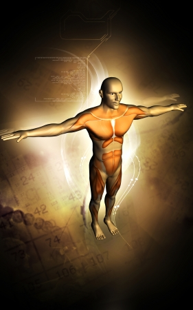 Digital illustration of human body with colour background   illustration