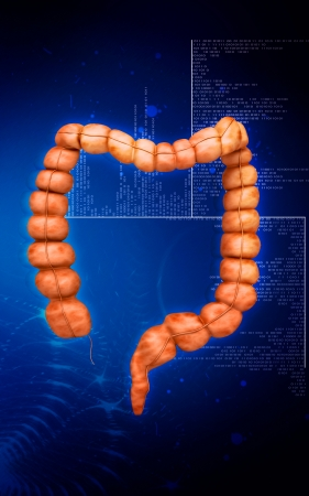Digital illustration of  Intestine in colour  background  illustration