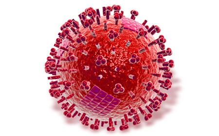 avian: Digital illustration of  avian virus