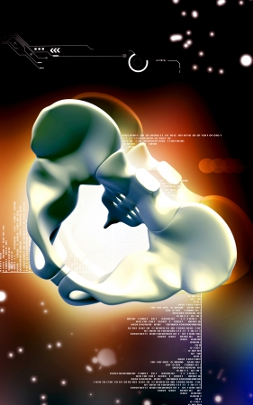 Digital illustration  of pelvic girdle in    colour background Stock Illustration - 24229677