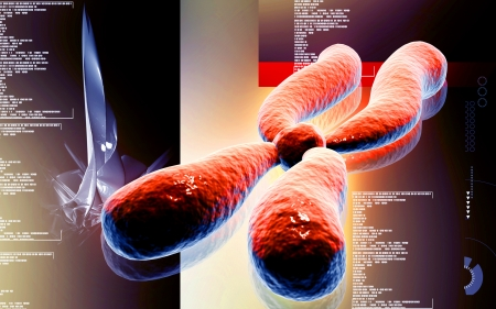 chromosome x y: Digital illustration  of chromosome in   colour  Stock Photo