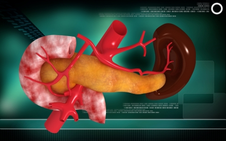 Digital illustration of  pancreas and spleen  in colour  background Stock Illustration - 24297701