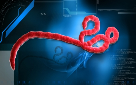 epidemic: Digital illustration of Ebola virus in   colour background    Stock Photo