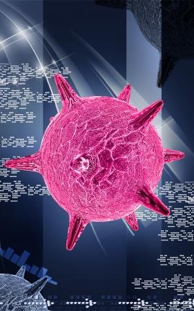 herpes: Digital illustration of  herpes virus