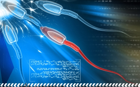 sexual health: Digital illustration of  sperm  in colour