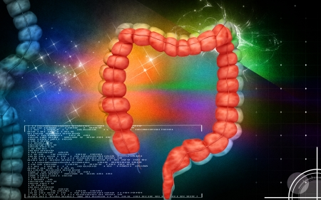 from small bowel: Digital illustration of  Intestine in colour    Stock Photo