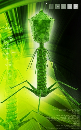immunological: Digital illustration of  Bacteria phage  in  colour  background  Stock Photo