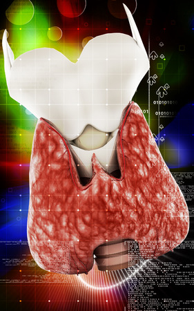 prominence: Digital illustration of  thyroid in colour  background