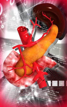 Digital illustration of  pancreas and spleen  in colour  background  illustration