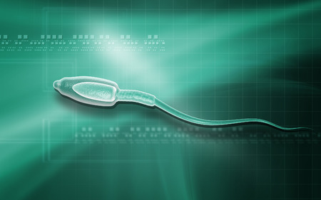 ovule: Digital illustration of  sperm  in colour  background   Stock Photo
