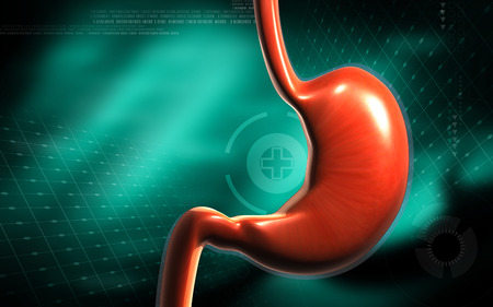 acid colors: Digital illustration of  stomach  in colour  background   Stock Photo