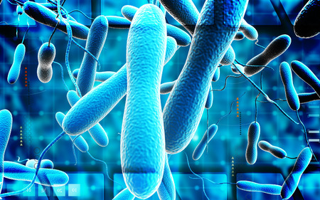 vibrio: Digital illustration of cholera bacteria in   colour background