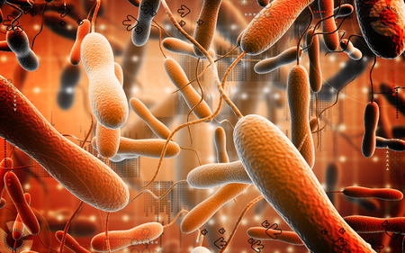 cholera: Digital illustration of cholera bacteria in   colour background
