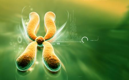 chromosome x y: Digital illustration  of chromosome in   colour background Stock Photo