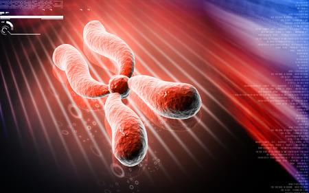 chromosome: Digital illustration  of chromosome in   colour background Stock Photo