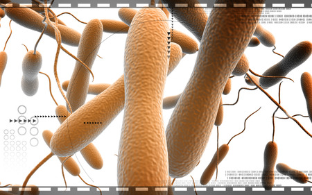 cholera: Digital illustration of cholera bacteria in   colour background