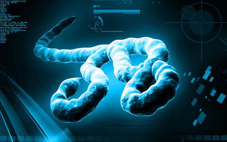 ebola: Digital illustration of Ebola virus in   colour background Stock Photo