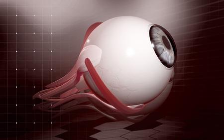 digital eye: Digital illustration of  eye   in  colour  background
