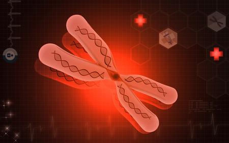 cromosoma: Ilustración digital del cromosoma en el color de fondo