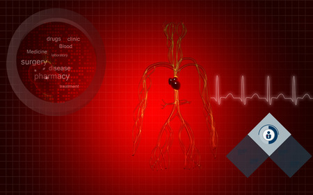 3d background: Digital illustration of vascular system in colour background Stock Photo