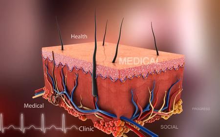 cellule nervose: Illustrazione digitale della pelle in colore di sfondo