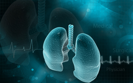 medical illustration: Digital illustration of human lungs in colour background