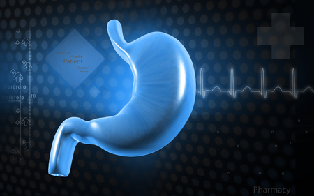 Digital illustration of  stomach  in colour  background