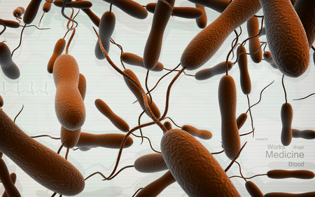 vibrio: Digital illustration of cholera bacteria in   colour background