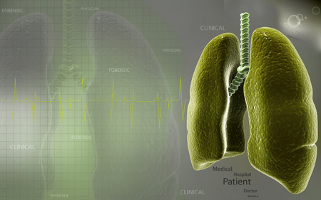 exhale: Digital illustration of human lungs in colour background