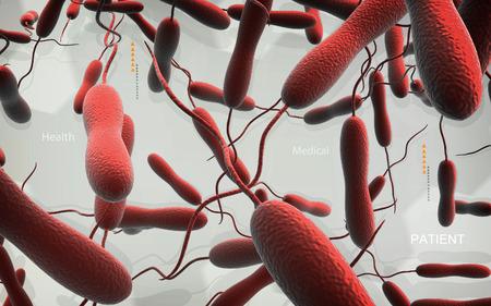 colera: Ilustraci�n digital de la bacteria del c�lera en color de fondo