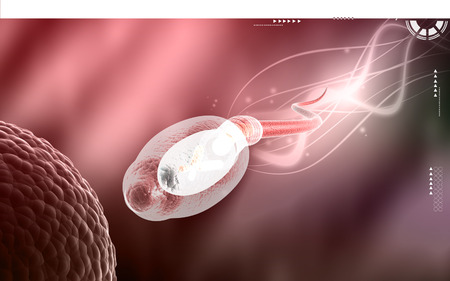 sexual anatomy: Digital illustration of  sperm  in colour  background