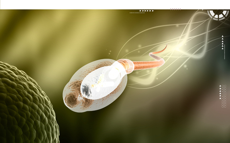 espermatozoides: Digital illustration of  sperm  in colour  background